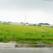 永康王行路農地